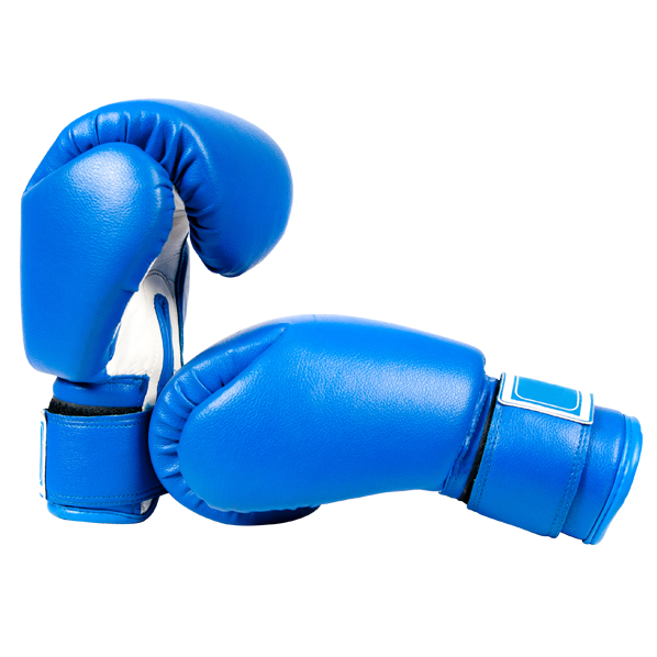 Blue Boxing Gloves for Cyber Security - Dynamic Networks Group